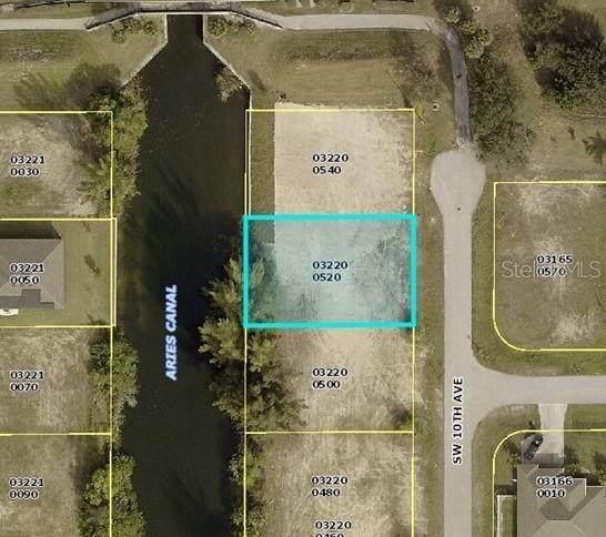 2420 SW 10TH Avenue, Cape Coral, FL 33914 (MLS #O5973599) :: Memory Hopkins Real Estate