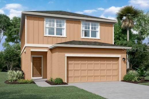 35202 Daisy Meadow, Zephyrhills, FL 33541 (MLS #O5973658) :: Zarghami Group