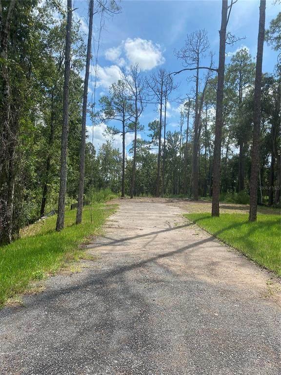 14128 E Lake Mary Jane Road, Orlando, FL 32832 (MLS #O5973740) :: Everlane Realty