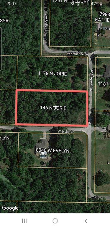 1146 N Jorie Terrace, Crystal River, FL 34429 (MLS #O5974052) :: Vacasa Real Estate
