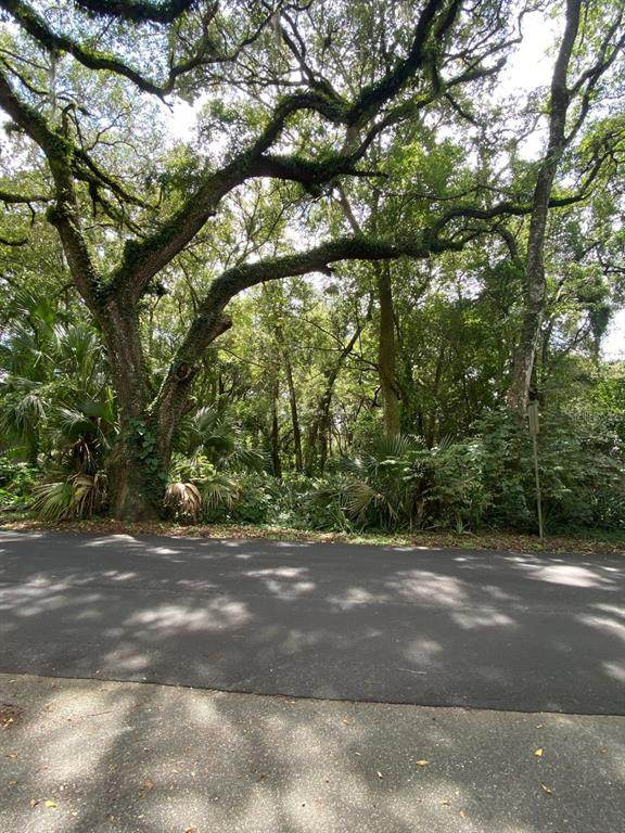 E Lady Lake Boulevard, Lady Lake, FL 32159 (MLS #O5974204) :: Stiver Firth International
