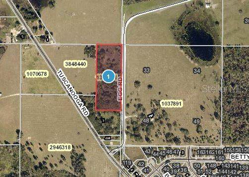 Egg Road, Groveland, FL 34736 (MLS #O5974579) :: Stiver Firth International