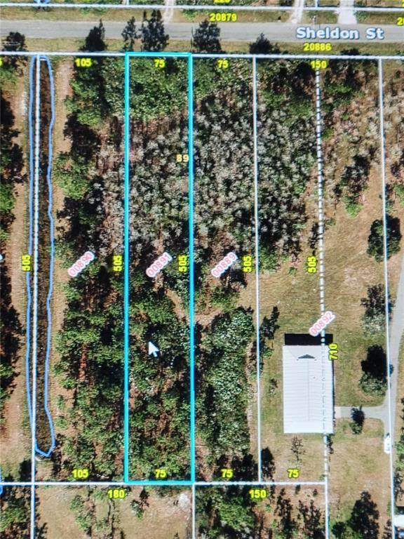 Sheldon Street, Orlando, FL 32833 (MLS #O5975012) :: Dalton Wade Real Estate Group
