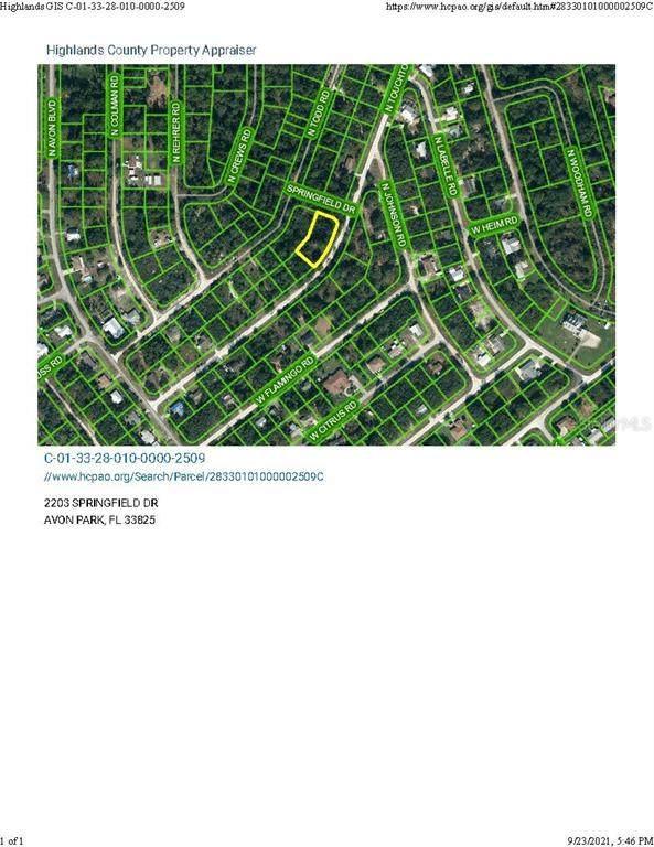 2497 N Touchton Drive, Avon Park, FL 33825 (MLS #O5975211) :: The Paxton Group