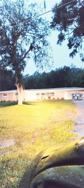 350 N Hart Road, Geneva, FL 32732 (MLS #O5975640) :: CARE - Calhoun & Associates Real Estate