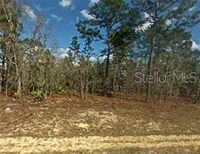7198 N Henderson Way, Citrus Springs, FL 34434 (MLS #O5977722) :: Delgado Home Team at Keller Williams