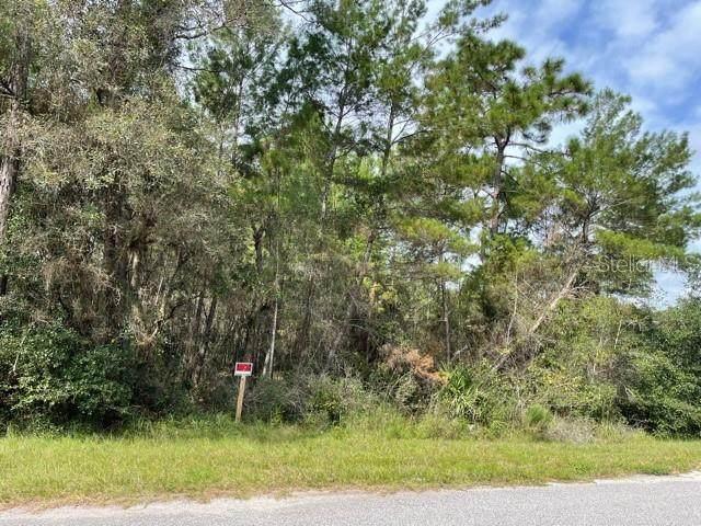 Chinaberry Street, Eustis, FL 32736 (MLS #O5977922) :: Delgado Home Team at Keller Williams