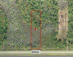 20633 E Colonial Drive, Christmas, FL 32709 (MLS #O5980258) :: RE/MAX LEGACY