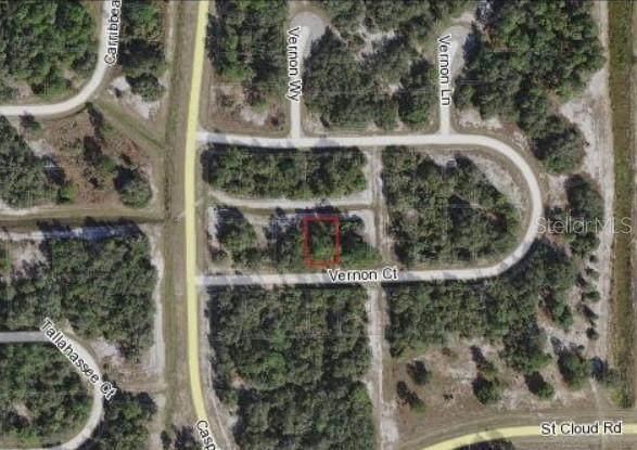 438 Vernon Court, Poinciana, FL 34759 (MLS #O5980389) :: Charles Rutenberg Realty