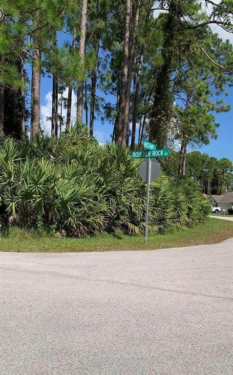 1 Botany Lane, Palm Coast, FL 32137 (MLS #O5980875) :: Your Florida House Team