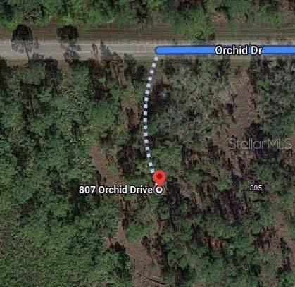 807 Orchid Drive, Indian Lake Estates, FL 33855 (MLS #O5981441) :: Vacasa Real Estate