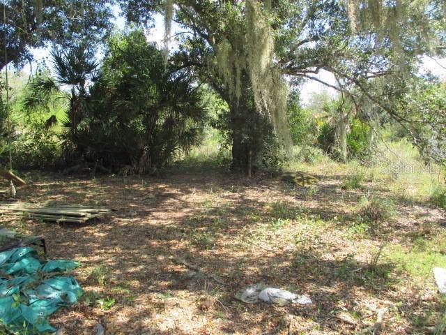 17276 NW 258TH Street, Okeechobee, FL 34972 (MLS #OK218565) :: Homepride Realty Services