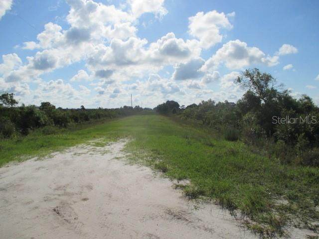 19266 NW 298TH Street, Okeechobee, FL 34972 (MLS #OK219209) :: Homepride Realty Services