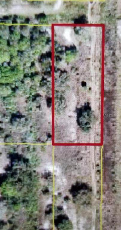 20018 NW 300TH Street, Okeechobee, FL 34972 (MLS #OK219864) :: Armel Real Estate