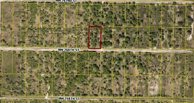 17223 NW 260TH Street, Okeechobee, FL 34972 (MLS #OK219954) :: Memory Hopkins Real Estate