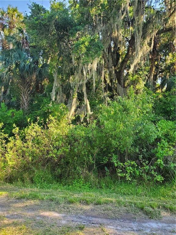 15736 NW 282 Street NW, Okeechobee, FL 34972 (MLS #OK220094) :: Premier Home Experts