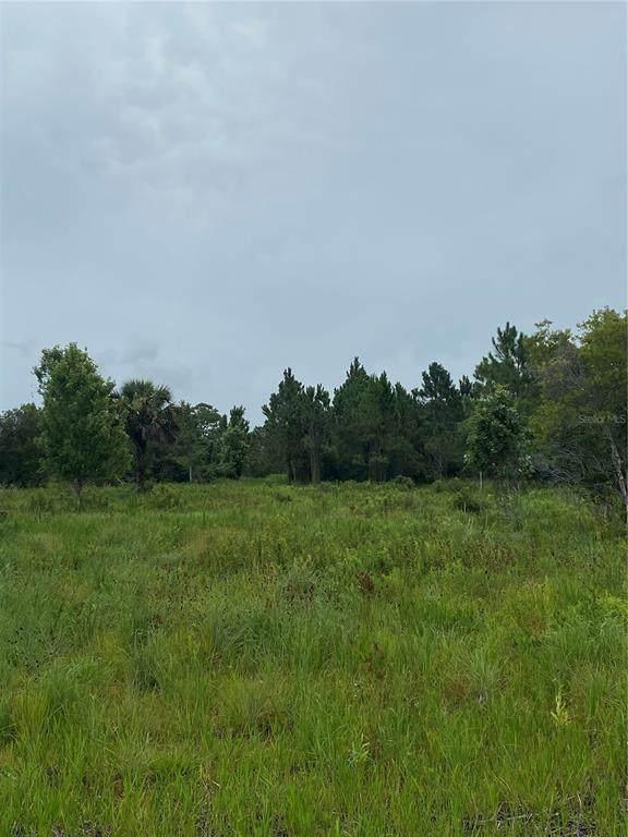 1950 SE 130TH Way, Okeechobee, FL 34974 (MLS #OK220323) :: The Price Group