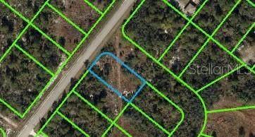 1066 Doral Avenue, Lake Placid, FL 33852 (MLS #OK220651) :: Everlane Realty