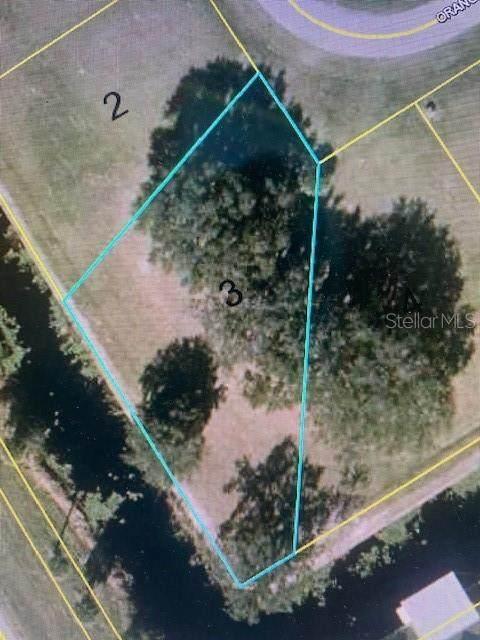 1103 Orange Loop, Okeechobee, FL 34974 (MLS #OK220661) :: Wolves Realty