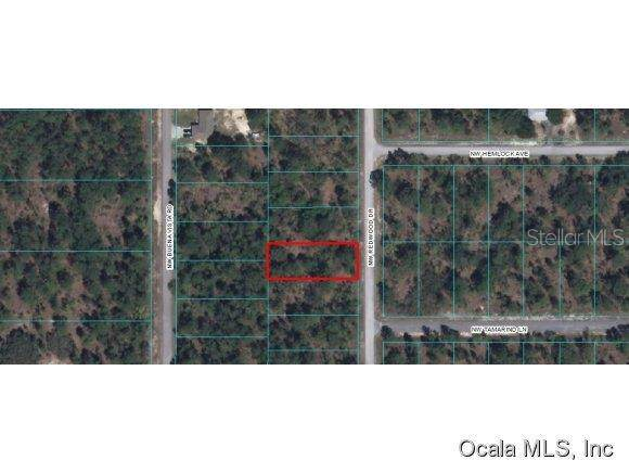 00 NW Redwood Drive, Dunnellon, FL 34431 (MLS #OM418749) :: Premium Properties Real Estate Services