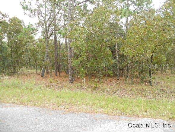 0 SE 131 Terrace, Dunnellon, FL 34432 (MLS #OM528266) :: Better Homes & Gardens Real Estate Thomas Group