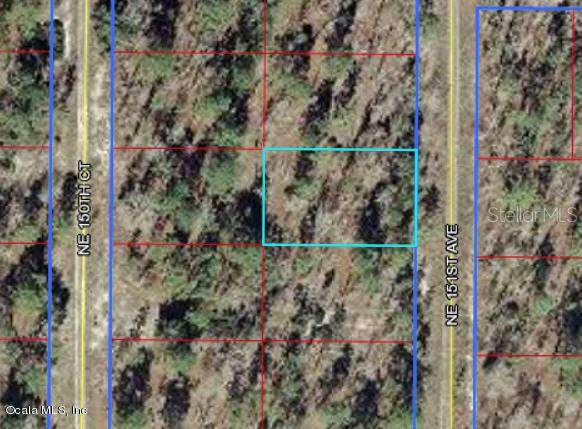 0 NE 151 Avenue, Williston, FL 32696 (MLS #OM528275) :: Griffin Group
