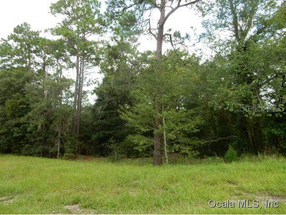00 SW 96th Place, Dunnellon, FL 34432 (MLS #OM528577) :: Bob Paulson with Vylla Home