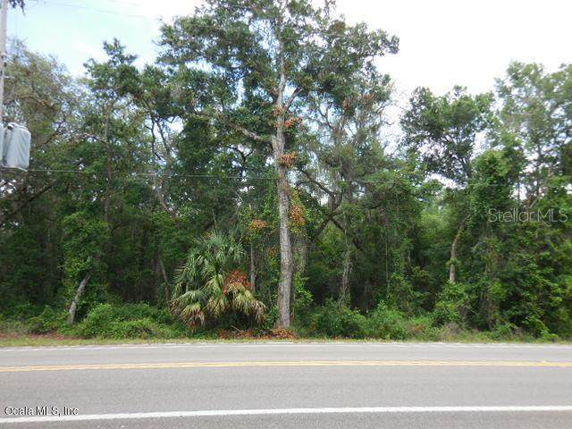 tbd E Thrasher Drive, Bronson, FL 32621 (MLS #OM536521) :: Premium Properties Real Estate Services