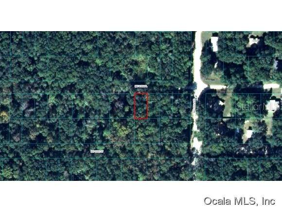 LOT 14 NW 65 Place, Ocala, FL 34475 (MLS #OM537396) :: Team Buky