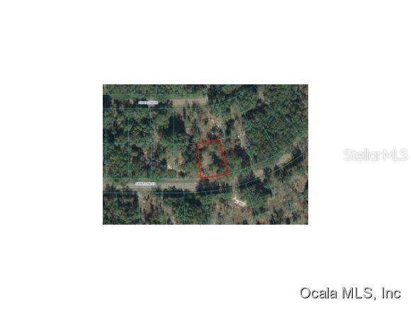 0 Fisher Lane Court, Ocklawaha, FL 32179 (MLS #OM537498) :: Bustamante Real Estate