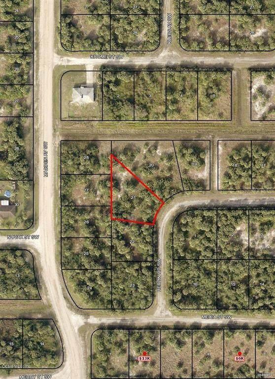 677 SW Heron Road, Palm Bay, FL 32908 (MLS #OM542862) :: Rabell Realty Group