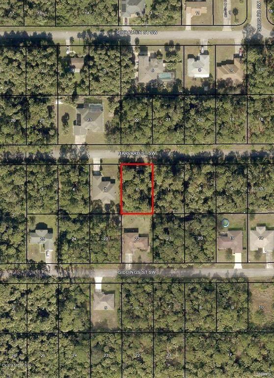 1356 SW Harvard Street, Palm Bay, FL 32908 (MLS #OM543653) :: Griffin Group
