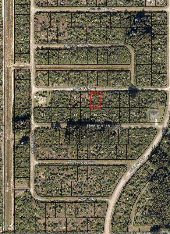 854 SW Bitlis Street, Palm Bay, FL 32908 (MLS #OM544004) :: MVP Realty
