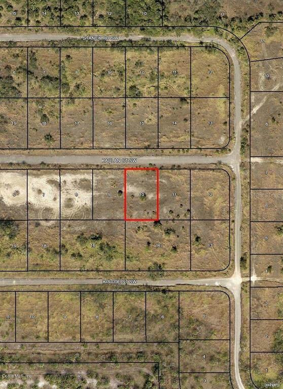 1522 SW Kaplan Street, Palm Bay, FL 32908 (MLS #OM544009) :: Premier Home Experts