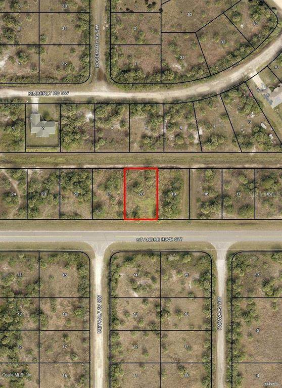 841 SW St Andre Boulevard, Palm Bay, FL 32908 (MLS #OM544011) :: RE/MAX Local Expert