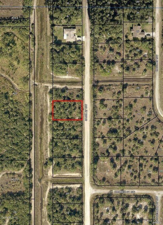 2914 SW Sage Avenue, Palm Bay, FL 32908 (MLS #OM544017) :: Lockhart & Walseth Team, Realtors