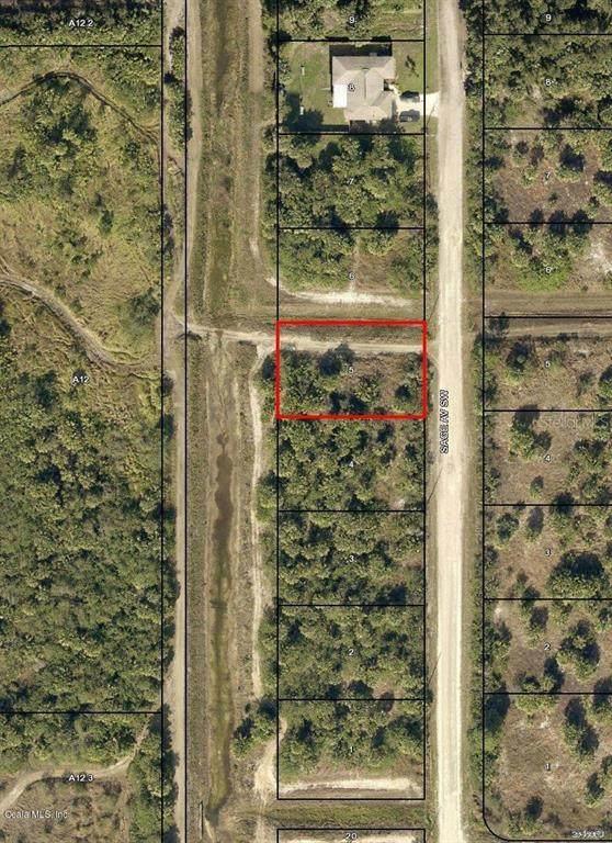 2906 SW Sage Avenue, Palm Bay, FL 32908 (MLS #OM544018) :: Lockhart & Walseth Team, Realtors