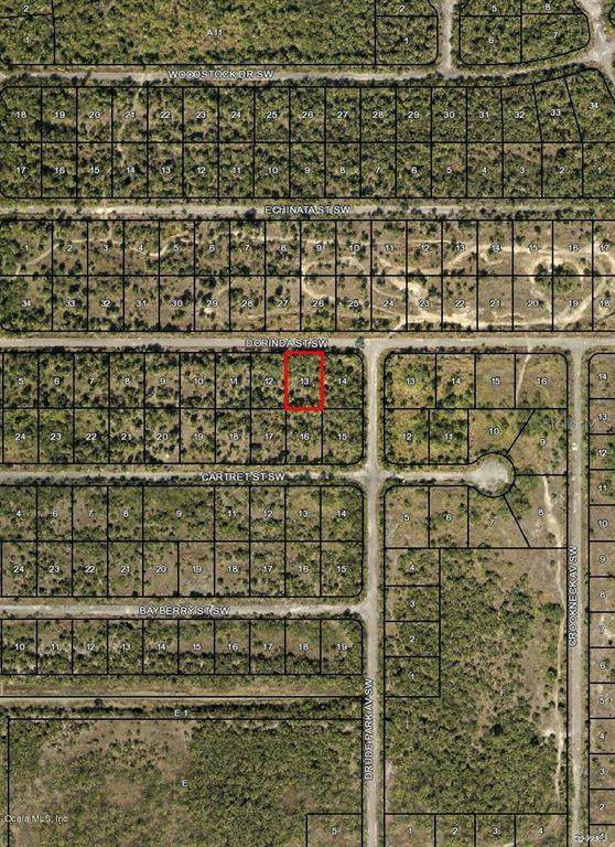 1000 SW Dorinda Street, Palm Bay, FL 32908 (MLS #OM544020) :: Bob Paulson with Vylla Home
