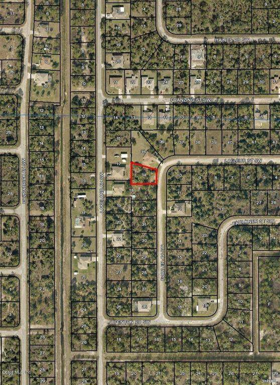 2918 SW Fowler Avenue, Palm Bay, FL 32908 (MLS #OM544021) :: The Light Team