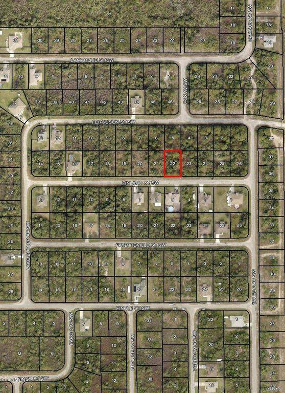 133 SW Finland Street, Palm Bay, FL 32908 (MLS #OM544022) :: The Light Team