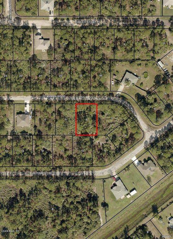 256 SE Feldman Street, Palm Bay, FL 32909 (MLS #OM544546) :: RE/MAX Local Expert