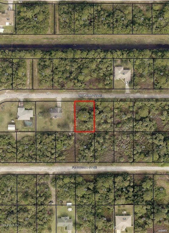 150 SE Halloran Street, Palm Bay, FL 32909 (MLS #OM544722) :: Young Real Estate