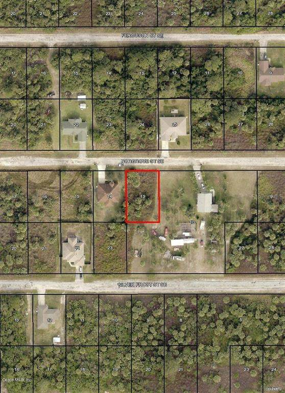 160 SE Norgrove Street, Palm Bay, FL 32909 (MLS #OM544725) :: Griffin Group