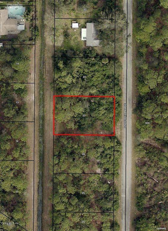 1094 SE Underhill Avenue, Palm Bay, FL 32909 (MLS #OM544726) :: Alpha Equity Team