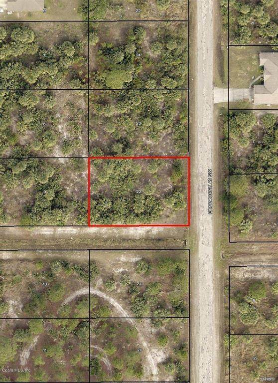3162 SW Fitzpatrick Avenue, Palm Bay, FL 32908 (MLS #OM544727) :: Team Buky