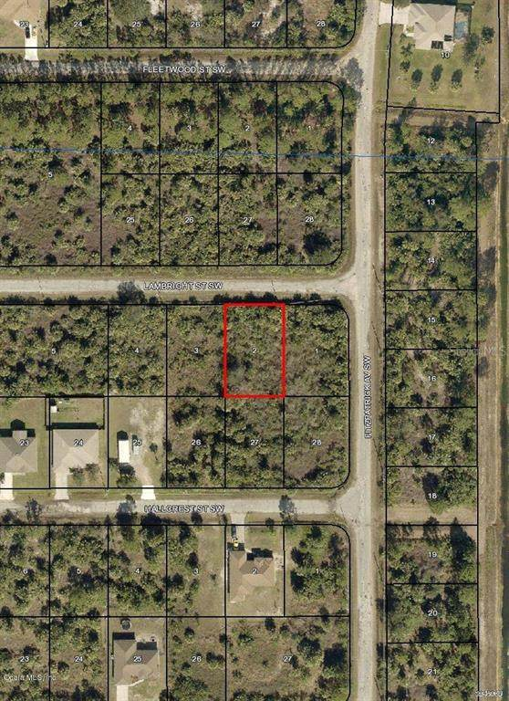 406 SW Lambright Street, Palm Bay, FL 32908 (MLS #OM544729) :: Heckler Realty