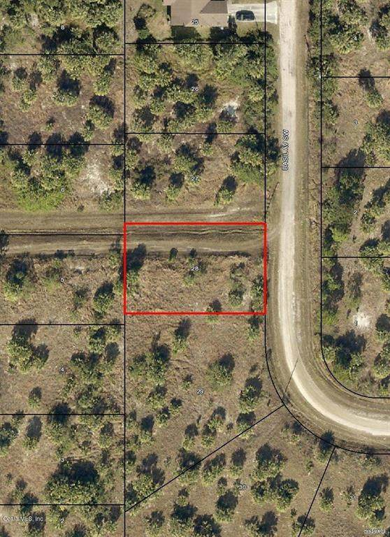 2886 SW Basil Avenue, Palm Bay, FL 32908 (MLS #OM544733) :: RE/MAX Local Expert