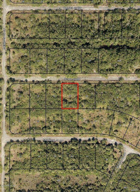 1574 SW Gesso Street, Palm Bay, FL 32908 (MLS #OM544739) :: Premier Home Experts