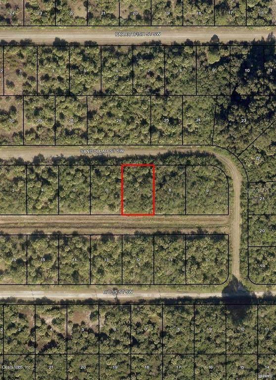 850 SW Sandollar Street, Palm Bay, FL 32908 (MLS #OM544741) :: Rabell Realty Group