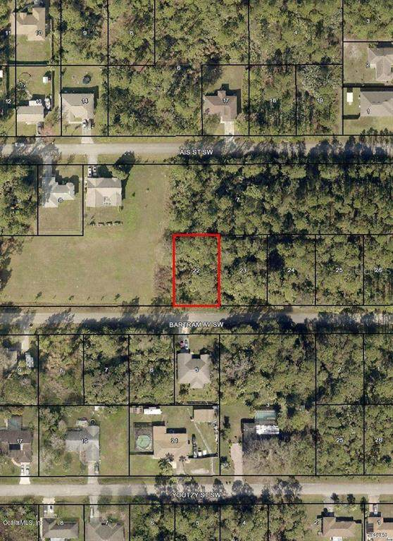 935 SW Bartram Avenue, Palm Bay, FL 32908 (MLS #OM544742) :: Bob Paulson with Vylla Home